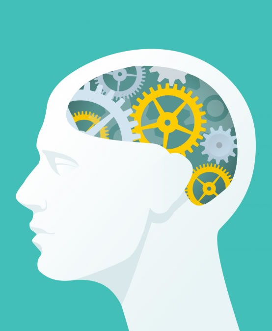 Neurociências aplicada a Educação